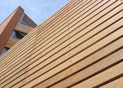 Timber Cladding at Paddington, London
