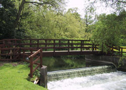 Ekki Hardwood Bridge in Hampshire